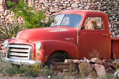 Old Truck. Old red truck with blow up figure in the front seat Royalty Free Stock Images