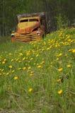 Old Truck in Field of Dandelions stock photo