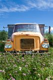 Old truck in Meadow. Photo of an old truck in a farmers field with flowers Stock Image