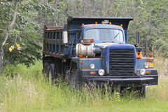 Old truck no. 6042 Royalty Free Stock Images