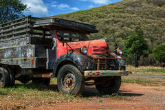 Old Truck. In the pasture Stock Image