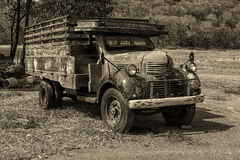 Old Truck. In the pasture Stock Images