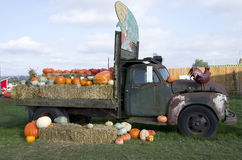 Old truck at pumpkin patch farm Stock Images