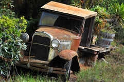 Old Truck used in Tropical Garden Royalty Free Stock Photo