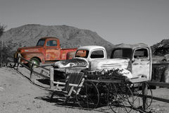 Old Trucks. Three old trucks in black and white with one truck red stock image