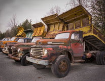 Old trucks from another era. These old dump trucks were used to transport gravel loads from a quarry. Real antiques but still functional Royalty Free Stock Photo