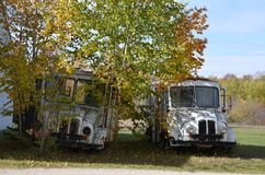 2 Old Trucks. Old Delivery Trucks Hwy 42 Door County Wi Royalty Free Stock Photography