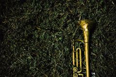 Old trumpet placed on green grass royalty free stock image