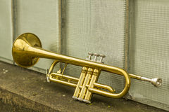 Old Trumpet Windows Royalty Free Stock Photos