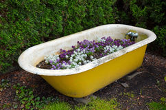 Old tub flower planter Royalty Free Stock Photos