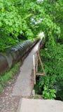Tube. An old tube hidden in the park Royalty Free Stock Photos