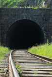 Old Tunnel. Railway going into ancient tunnel Stock Photos