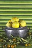 Old tureen with lemons,mandarins,green background Royalty Free Stock Image