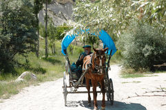 Old Turkish farmer driving horse & buggy Stock Image