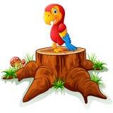 Old turtle posing on tree stump Stock Image