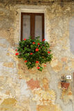 Old tuscan house detail Royalty Free Stock Photography