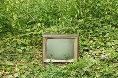 Old TV set among green plants. Old outmoded TV set in an environment of various green plants. Ecology concept Royalty Free Stock Photography
