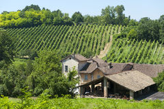 Old typical farm in the Oltrepo Pavese Royalty Free Stock Photos