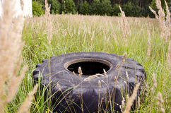 Old tyre in the grass. In the forest Royalty Free Stock Photo