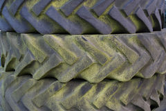 Old tyre treads with green mould Royalty Free Stock Photography