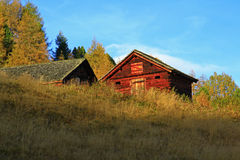 Old tyrolean alp Royalty Free Stock Photo