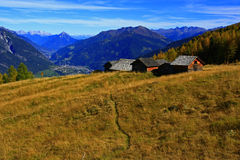 Old tyrolean alp Royalty Free Stock Image