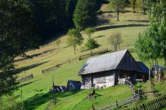 The old Ukrainian hut with a slate roof and a wooden fence in a green fiel. D Royalty Free Stock Images