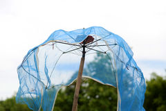 Old Umbrella with Mesh Stock Images