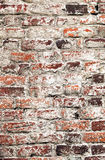 Old uneven decayed whitewashed shabby brick wall Stock Photos