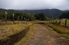 Old unpaved road in rural Panama on a foggy morning Royalty Free Stock Images