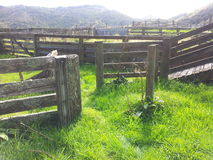 The old unused sheep yards Royalty Free Stock Photography
