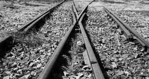 Old used railway tracks in duotone and small flowe artistic conv Royalty Free Stock Photo