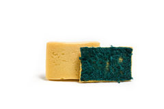 Old used sponge. Royalty Free Stock Images