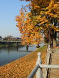 Old Uzhgorod in autumn colors. In sunshine October day Royalty Free Stock Photos