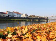Old Uzhgorod in autumn colors. In sunshine October day Stock Photo