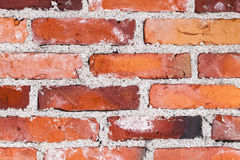 Old variable colored brick wall Stock Photography