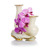 Old Vases and Orchid Royalty Free Stock Image