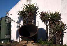 Old Vat & Aloes. An old vat and aloes at the Bathurst Agricultural Museum in the Eastern Cape, South Africa Royalty Free Stock Images