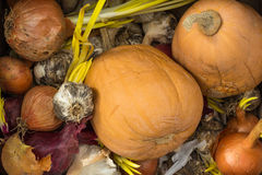 Old vegetables Royalty Free Stock Images
