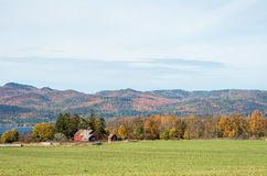 Old Vermont barns Stock Images