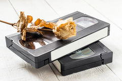 The old video tapes and dried rose royalty free stock photography