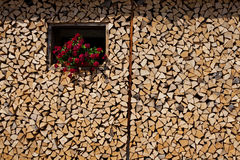 Old village firewood stack Royalty Free Stock Image