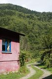 An old village house in the black sea. Forest road and never lacking on green Royalty Free Stock Image