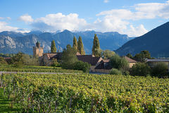 Old village maienfeld, canton grisons, switzerland. Old village and vineyard maienfeld in idyllic mountain landscape. Canton grisons switzerland Royalty Free Stock Image