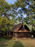Old village wood house. Brown trees summer europe paesan royalty free stock photos