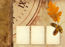 Old vintage album with autumn oak leaves Royalty Free Stock Photo