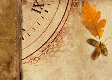 Old vintage album with autumn oak leaves Royalty Free Stock Image