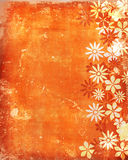 Old, vintage background with flowers. On brown Stock Images