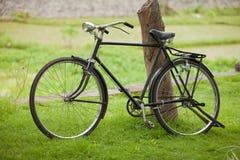 Old vintage bicycle. Old vintage steel bicycle in green park Stock Photos