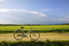 Old vintage bicycle with dramatic blue sky and paddy field at ba Stock Images
